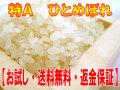 【お試し・送料無料】宮城登米産ひとめぼれ
